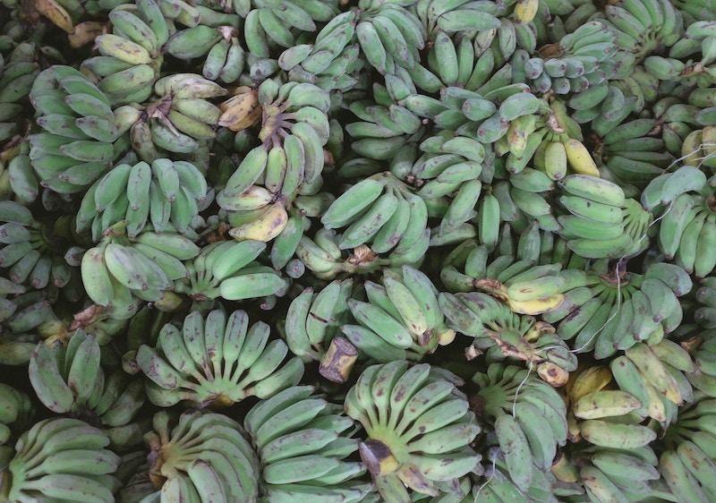 banana-stuff