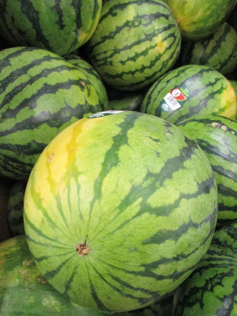 melon-fest-2