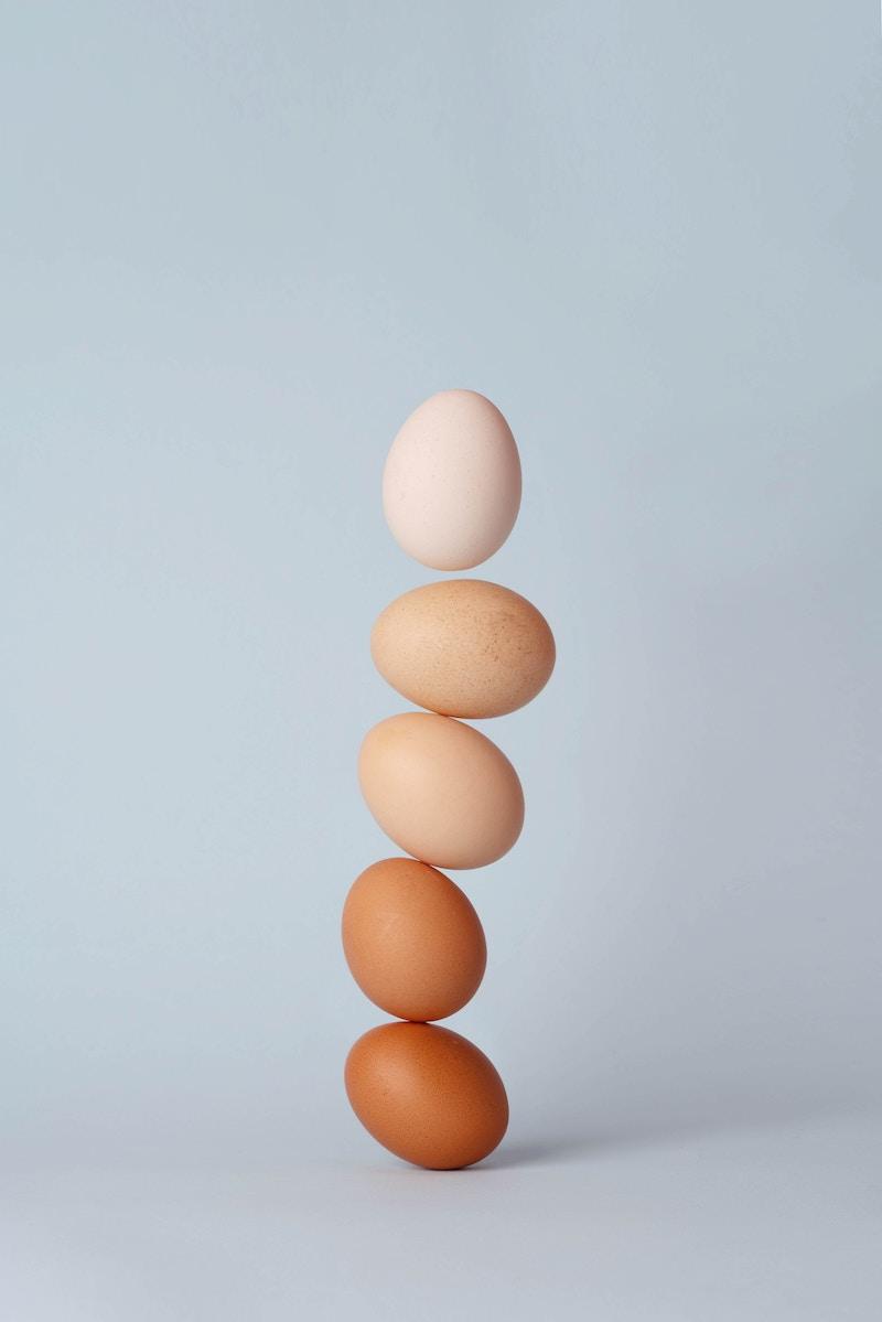 egg-bop