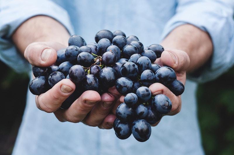grape-juice-contest