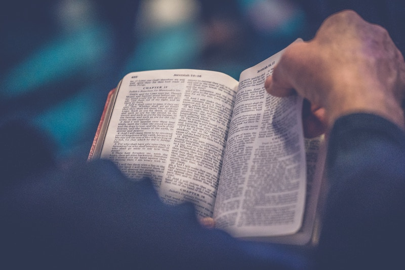 books-of-the-bible-hunt
