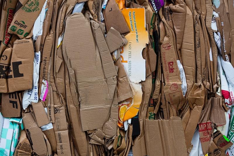 cardboard-camelot