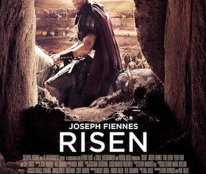 risenwhy-do-you-follow-him